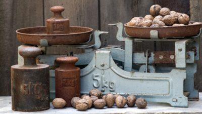 Narrative Balance: A Pacing Necessity